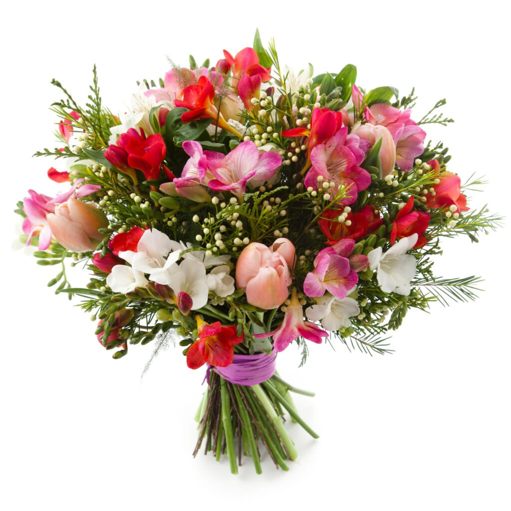 High angle view of bouquet. Freesia, Tulip and Alstroemeria flowers. White background.    [url=file_closeup.php?id=18850016][img]file_thumbview_approve.php?size=1&id=18850016[/img][/url] [url=file_closeup.php?id=18832334][img]file_thumbview_approve.php?size=1&id=18832334[/img][/url] [url=file_closeup.php?id=18781316][img]file_thumbview_approve.php?size=1&id=18781316[/img][/url] [url=file_closeup.php?id=18493565][img]file_thumbview_approve.php?size=1&id=18493565[/img][/url] [url=file_closeup.php?id=19192079][img]file_thumbview_approve.php?size=1&id=19192079[/img][/url] [url=file_closeup.php?id=18664775][img]file_thumbview_approve.php?size=1&id=18664775[/img][/url] [url=file_closeup.php?id=19228332][img]file_thumbview_approve.php?size=1&id=19228332[/img][/url] [url=file_closeup.php?id=19154136][img]file_thumbview_approve.php?size=1&id=19154136[/img][/url] [url=file_closeup.php?id=19251519][img]file_thumbview_approve.php?size=1&id=19251519[/img][/url] [url=file_closeup.php?id=19192688][img]file_thumbview_approve.php?size=1&id=19192688[/img][/url] [url=file_closeup.php?id=19292065][img]file_thumbview_approve.php?size=1&id=19292065[/img][/url] [url=file_closeup.php?id=19462008][img]file_thumbview_approve.php?size=1&id=19462008[/img][/url] [url=file_closeup.php?id=12633265][img]file_thumbview_approve.php?size=1&id=12633265[/img][/url] [url=file_closeup.php?id=12618895][img]file_thumbview_approve.php?size=1&id=12618895[/img][/url] [url=file_closeup.php?id=19462927][img]file_thumbview_approve.php?size=1&id=19462927[/img][/url]